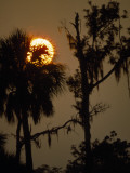 Sunset over Florida&#39;s Suwannee River