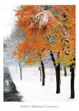 Snowfall III