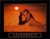 Leadership: Lion