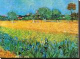 Vue d'Arles aux iris Tableau sur toile