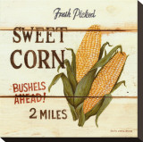 Fresh Picked Sweet Corn