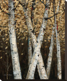Shimmering Birches I