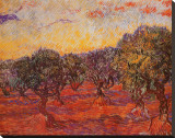 The Olive Grove  c1889