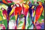 Parrot Family