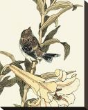 Oriental Bird on Branch II