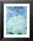 Rose blanche et dauphinelle Reproduction laminée et encadrée par Georgia O'Keeffe