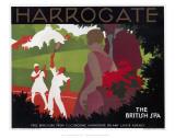 Harrogate  the British Spa