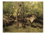 Rocks in the Forest of Fontainebleau