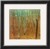 Forest of Beeches