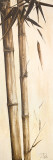 Sepia Guadua Bamboo I
