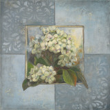 Hydrangeas on Blue II