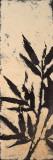 Bamboo Silhouette II