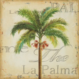 La Palma II