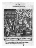 Stultorum Medicus from &#39;Proscenium Vitae Humanae Sive Emblematum Secularium&#39;