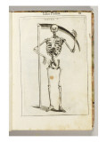 A Skeleton Holding a Scythe in the Style of a Grim Reaper