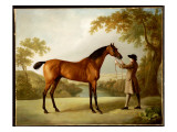 Tristram Shandy  a Bay Racehorse Held by a Groom in an Extensive Landscape  C1760