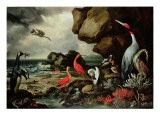 A Penguin  a Pair of Flamingoes  and Other Exotic Birds  Shells  and Coral on the Shoreline