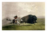 The Buffalo Chase &#39;singling Out&#39;  Pub by Currier and Ives