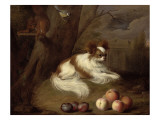 A Spaniel by a Tree with a Squirrel and a Blue-Tit