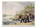 "Chasing a Tiger across a River  from ""Oriental Field Sports""  Pub by Edward Orme  1807"