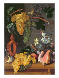 Still Life with Grapes  Birds  Flowers and Shells