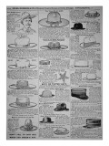 Pages from Sears  Roebuck of Chicago  Catalogue of 1902