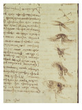 Scientific Diagrams  from the &#39;Codex Leicester&#39;  1508-12