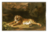 Portrait of the Royal Tiger  C1770