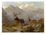 Stags and Hinds in a Highland Landscape  1864