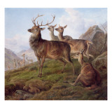 Red Deer in a Highland Landscape  1872