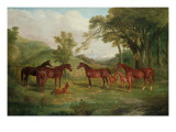 The Streatlam Stud  Mares and Foals  1836
