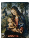 Madonna under the Fir Tree  C1510