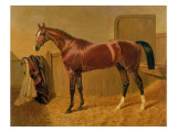 Orlando'  Winner of the Derby in 1844