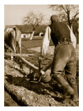 A German Farmer at Work