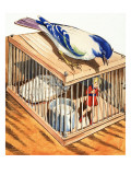 Tom Thumb in a Bird Cage  1957