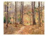 Virginia Woods  1893