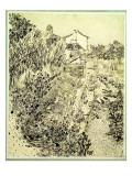 Garden of Flowers  1888