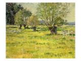 Springtime  1892