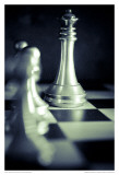Black and White Chess VI