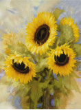 Sunflowers Dream
