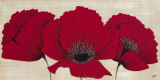 Linen Poppies I