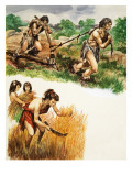 Stone Age Farming