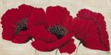 Linen Poppies II
