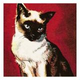 Siamese Cat Giclée par McConnell