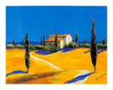 Summer in Provence II
