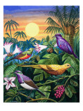 Tropical Sunbirds
