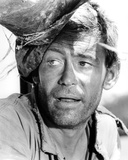 Peter O'Toole - Murphy's War