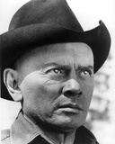 Yul Brynner - Westworld