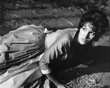 Yvonne Romain - The Curse of the Werewolf