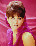 Suzanne Pleshette